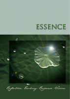 Image of the Essence Workbook